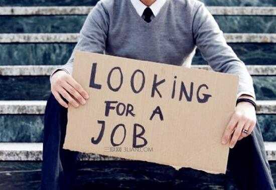 求职找工作,这